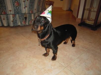 Ettore al suo primo compleanno (3)