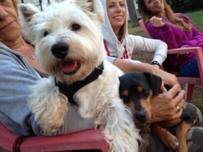 Snoopy al Parco con i suoi amici 018